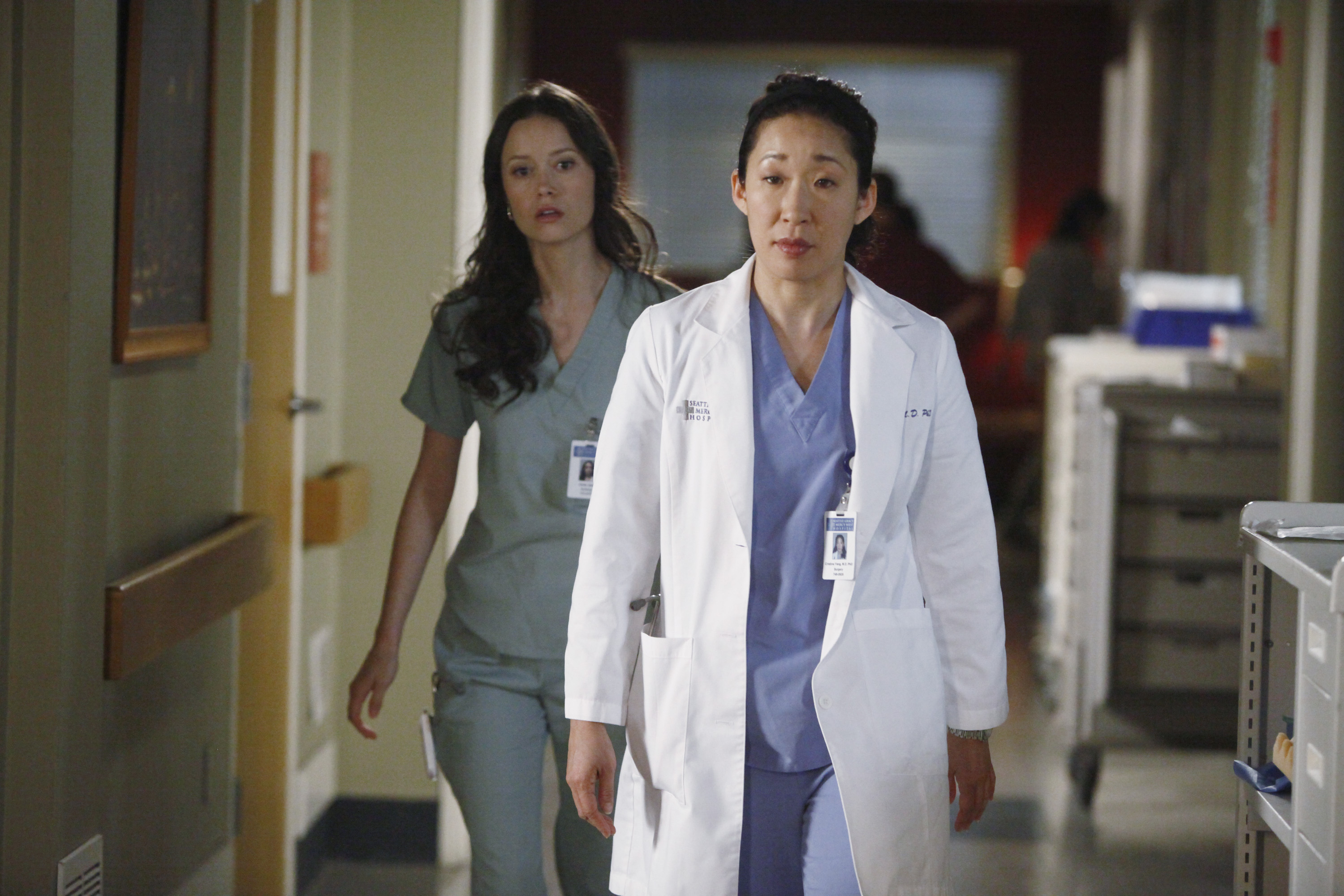 "Grey's Anatomy: Episode 8.17 ""One Step Too Far"" HQ ..."